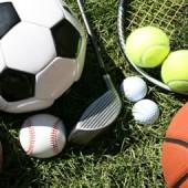 Torneos / fiestas deportivas